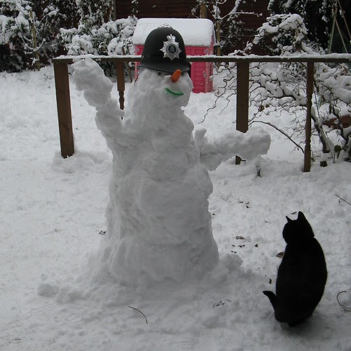 snowpoliceman and black cat