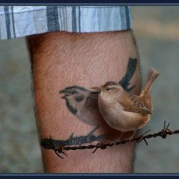 Bird On A Wire Picture By Zizounai For Living Tattoos 3 Photoshop