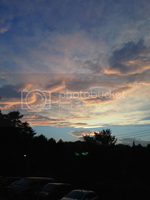 photo IMG_4161_zpslnq0v7kr.jpg