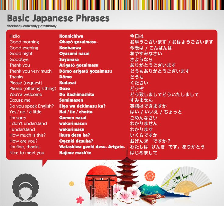 Learn japanese easy and fast learn basic japanese words and phrases basic japanese phrases lets learn japanese pinterest m4hsunfo