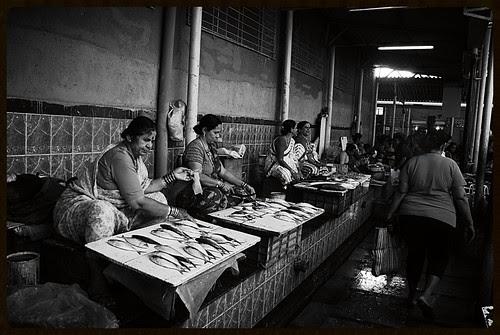 Bandra Bazar Fish Market by firoze shakir photographerno1