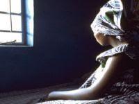 Violência contra a Mulher: ONU lança banco de dados. 14823.jpeg