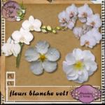 preview_fleur_blanche_vol1_1ba83b6