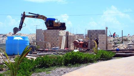 iguanas-construccion