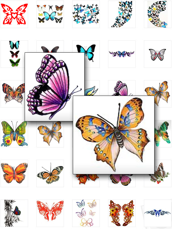Butterfly Tattoo Designs|Butterfly Tattoo Art|Colorful Butterfly Tattoos|For