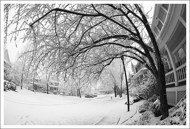 Spring Snow 2013-03-24 4