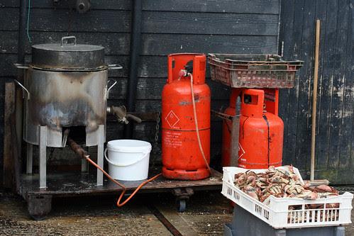 Crab boiler