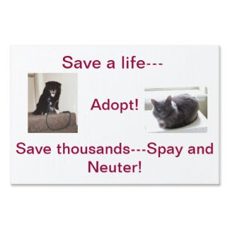 Yard Sign - Spay & Neuter Your Pets