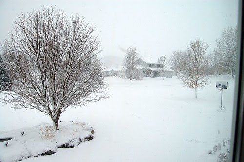 March 21? Shot out my front window...