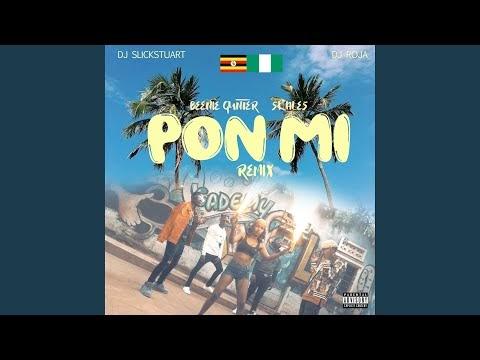 Pon Mi Remix · Beenie Gunter · Skales.mp3