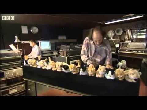 video que muestra Un Piano hecho de Gatitos de juguete