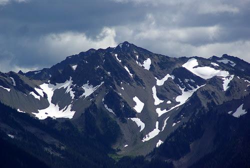 2010-08-28 Hurricane Ridge (26)