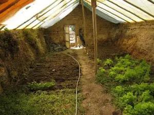 underground_greenhouse