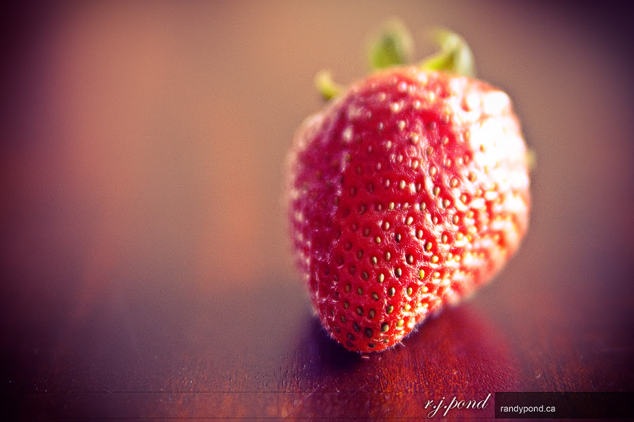 ~ 145/365 Strawberry ~