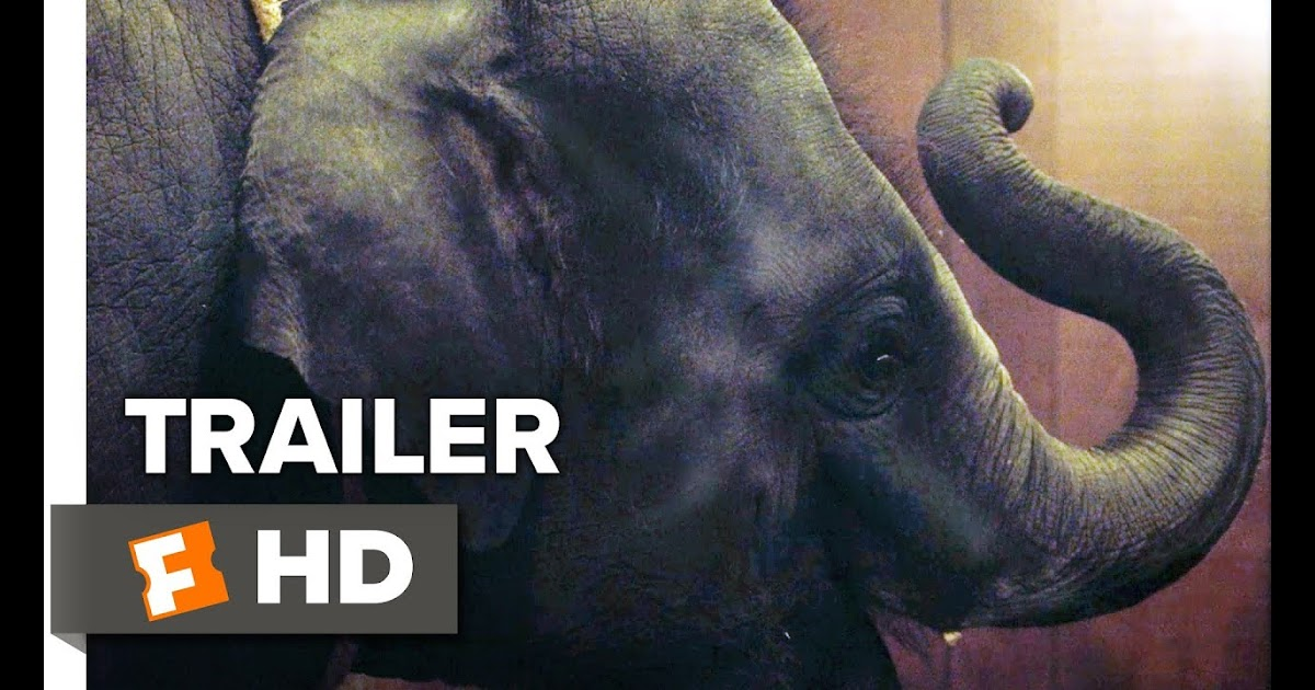 Movieclips Indie Zoo Trailer 1 2018 Movieclips Indie