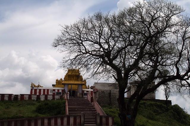 Himavad Gopalaswamy Betta (Hill), Chamarajanagar