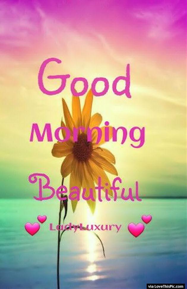 Good Morning Bmindful Forum