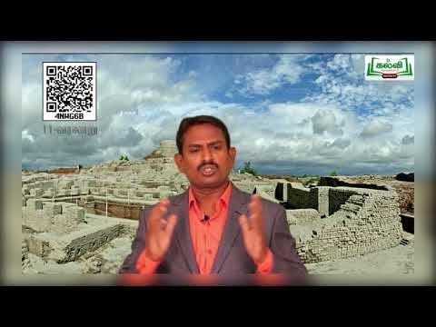 11th History பண்டைய இந்தியா தொடக்கம் முதல் சிந்து பகுதி 3 அலகு 1 Kalvi TV