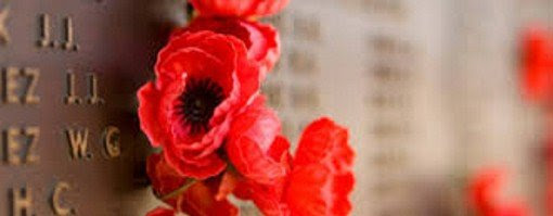 anzac poppies AWM 2