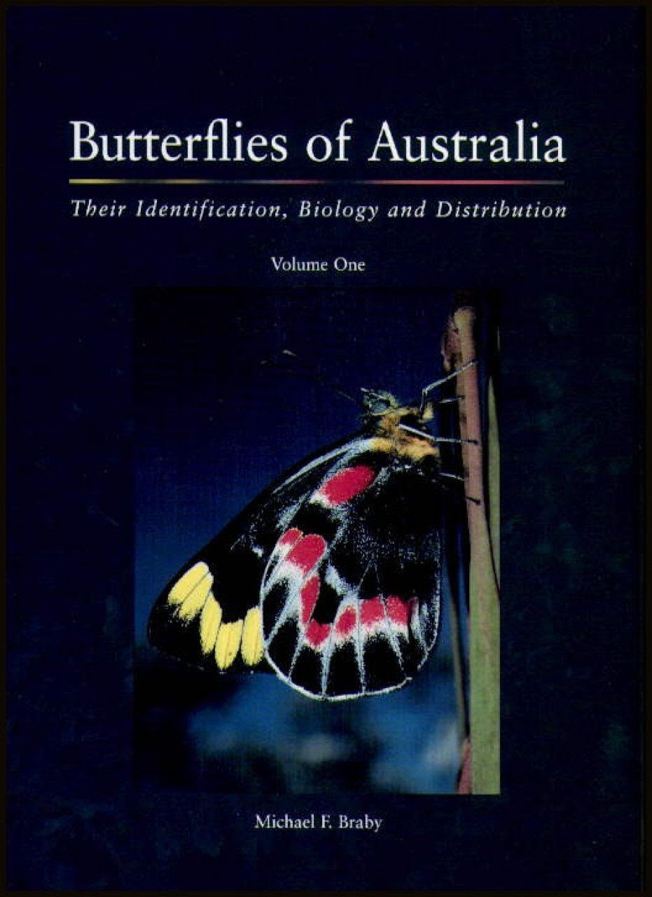 Butterflies Of Australia Their Identification Biology And Distribution