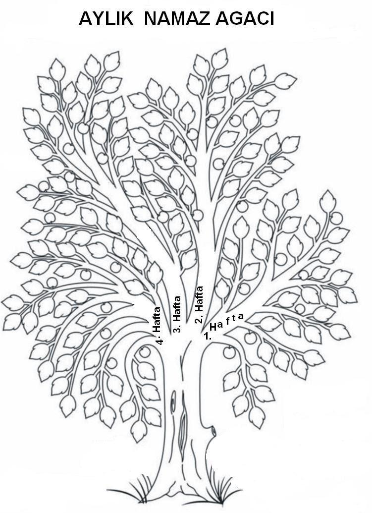 Sonbahar Ağaç çizimleri 15 Doğa Fipixde