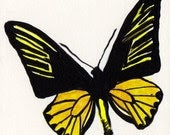 Acrylic painting of a butterfly No 4