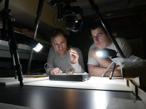 Lumix Shoots Nikon Shooting Fossils