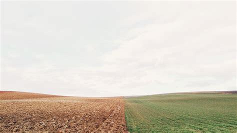 mx barren land green field nature papersco