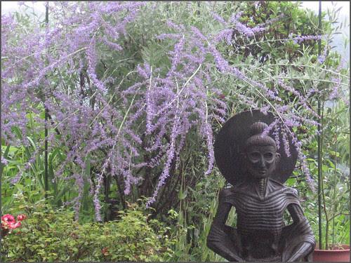 04 lavender END