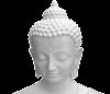 Gautam Buddha in Hindi ( जीवन परिचय )