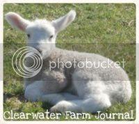 Clearwater Farm Journal