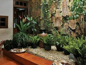 Taman rumah minimalis  creativ  Pinterest