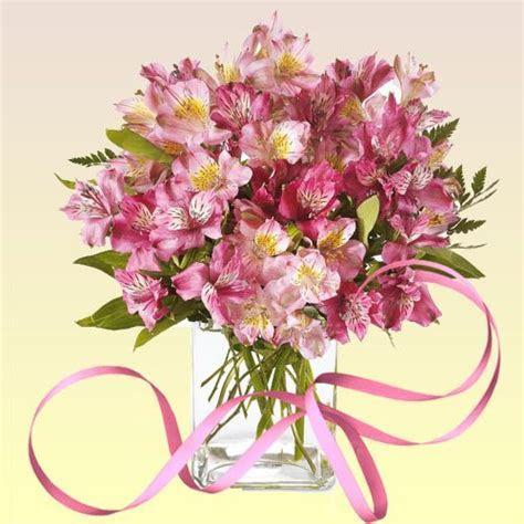 71 best images about Alstroemeria Bouquet   Astromelia