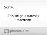 The Bush that broke the camels back