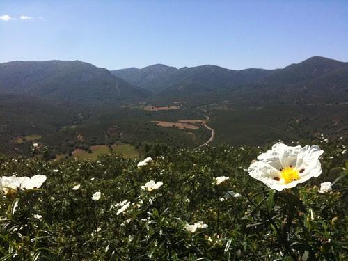 Ruta del Barranco del Chorro