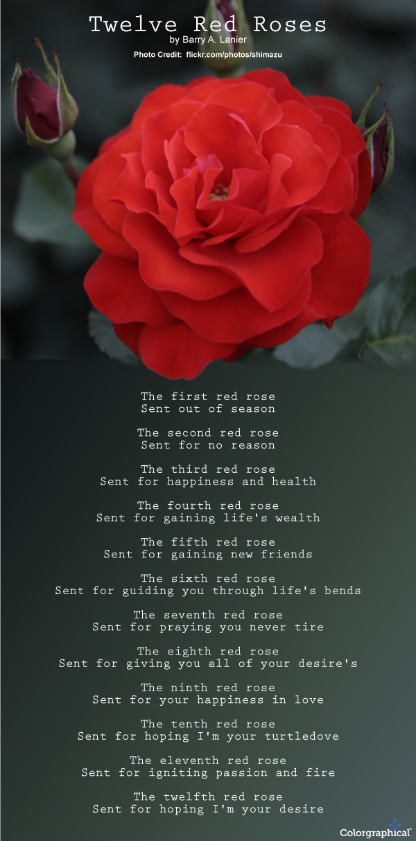 68 Symbolic Meaning Of Red Roses Roses Meaning Of Red Symbolic
