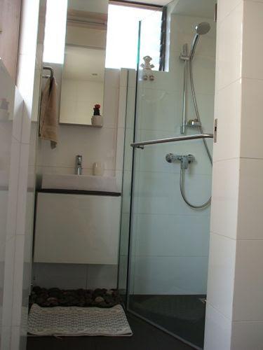 Guest Toilet - Shower Area