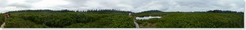 Lovrenško barje - panorama