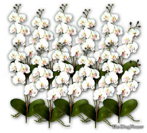 10X 17\u201d White Phalaenopsis Artificial Silk Orchid Flowers