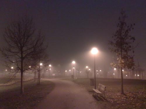 Nebbia serale al parco by durishti