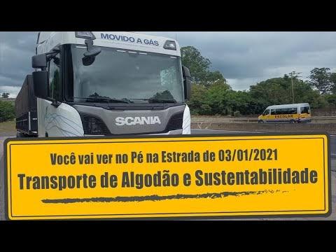 PROGRAMA PÉ NA ESTRADA: Transporte de algodão e sustentabilidade