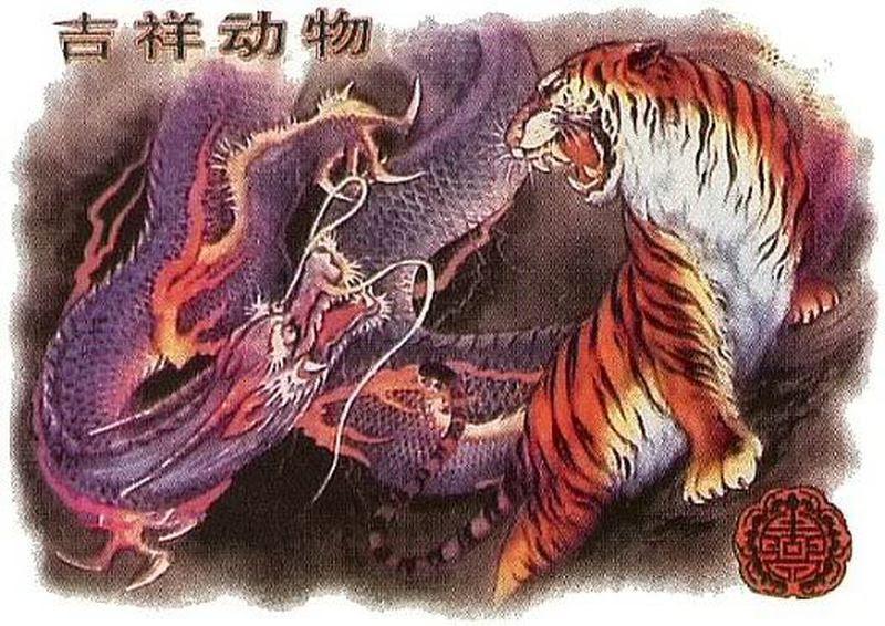 Awesome Dragon Tiger Tattoo Design Tattoos Book 65000 Tattoos