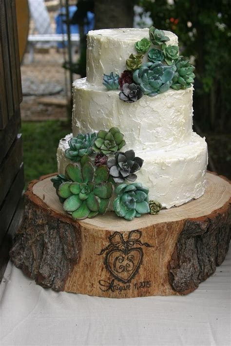 My first wedding cake! Gum paste succulents. Rustic