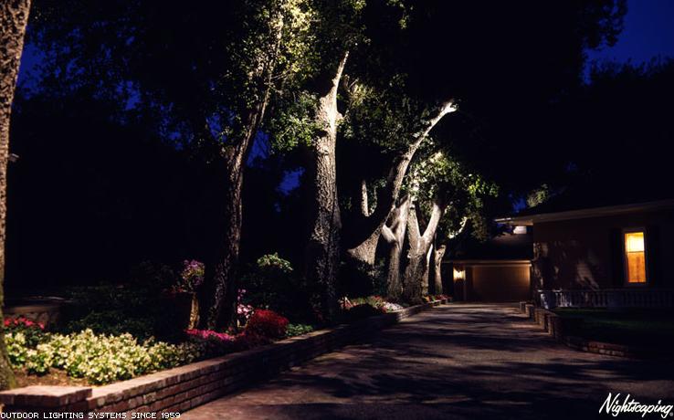 Outdoor Lighting | Davidson's Landscape