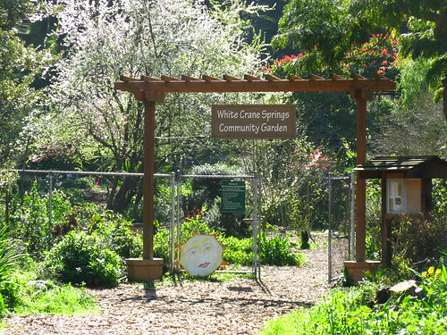 White Crane Springs Community Garden; San Francisco