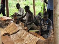 Barkcloth makers in Uganda