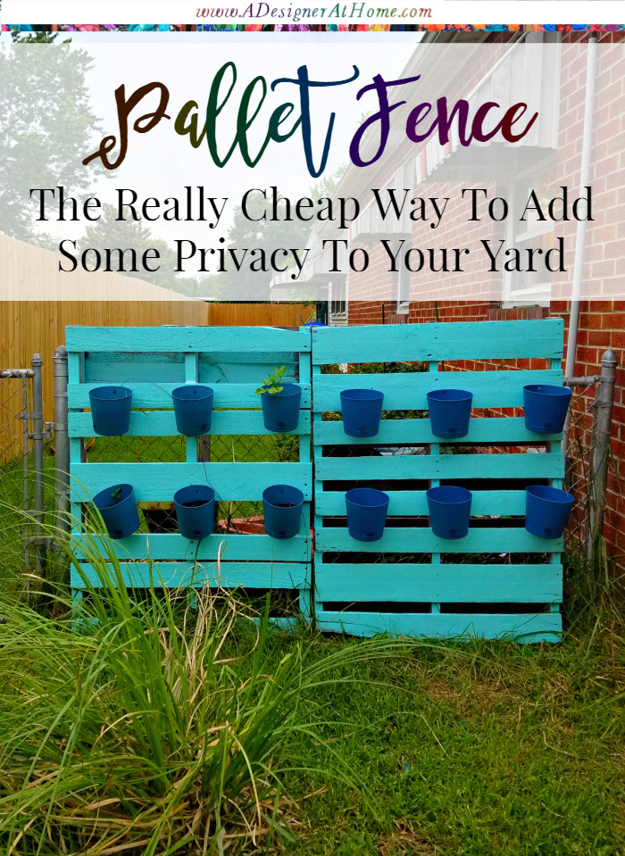 The cheapest way to hide a lessen the eyesore of a chain link fence and add a bit of privacy to your yard