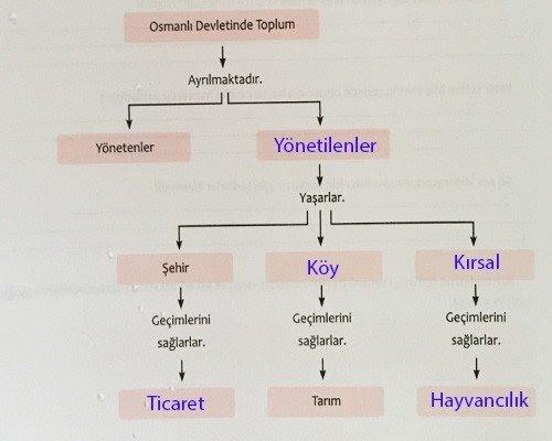 7-sinif-ekoyay-yayinlari-osmanlida-siyaset-ve-toplum-cevaplari