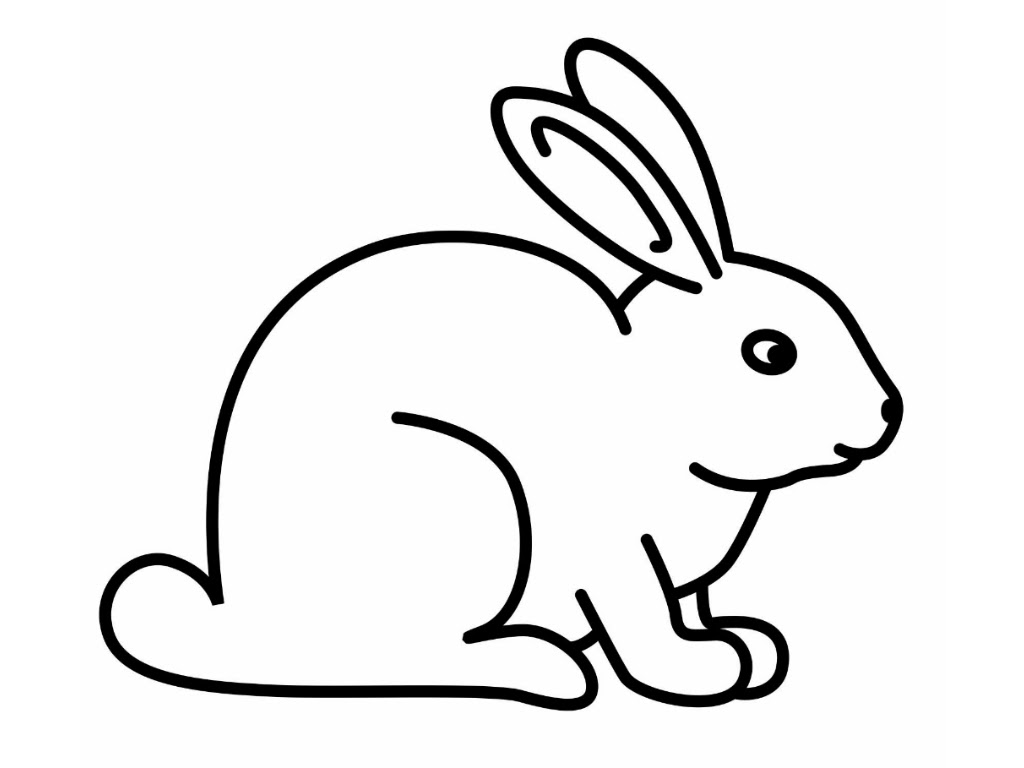 Rabbit Drawings Coloring Coloring Pages
