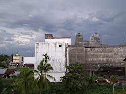 Swiftlet Farm Fortress